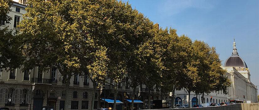 Quai Gailleton, Lyon
